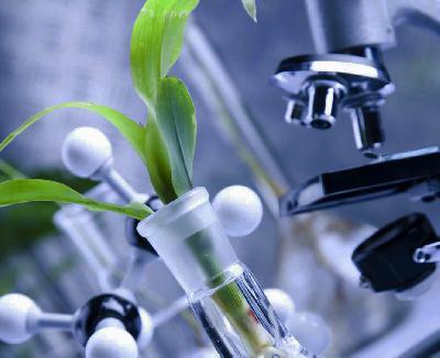 Старт осенней сессии конкурса «Битва умов» для биологов, химиков и экономистов